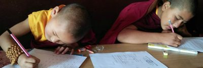 Exam Time and Happy Losar